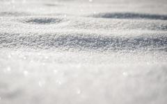 Do Head Lice Spread in the Winter?